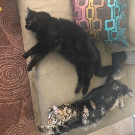 Tina a Louise