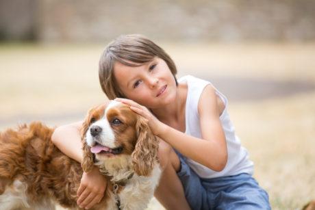 Pes a jeho majitel