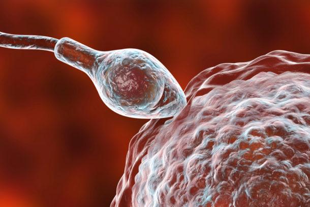 sperma pics