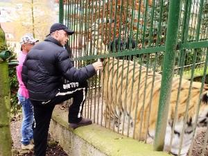 Eros a tygřice