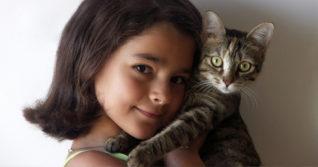 stříkat kočičky
