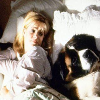 Nechte spát svého psa v posteli!