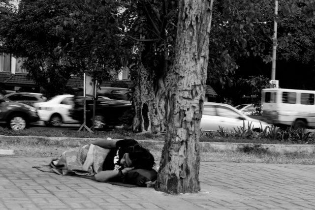 bezdomovec